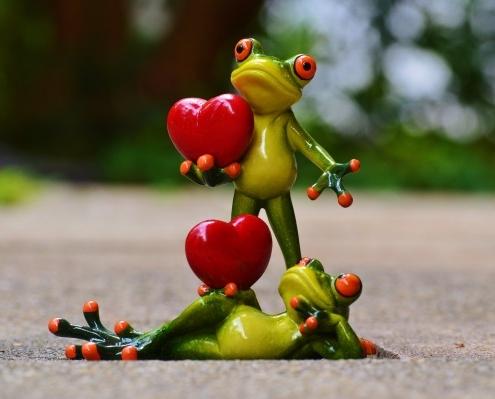 reclamar amor