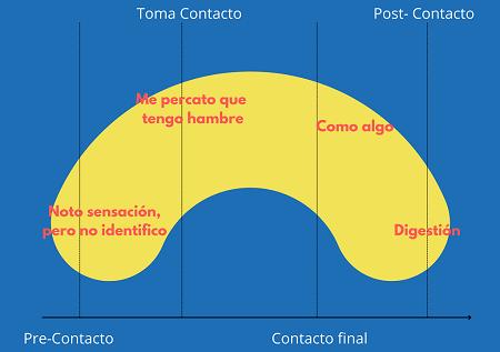 ciclo de la experiencia gestalt